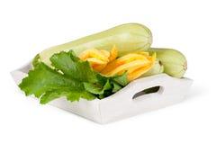 Świeżego warzywa zucchini zdjęcia stock