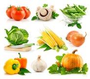 świeżego zielonego urlop ustaleni warzywa Fotografia Stock