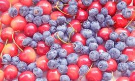 Świeżej jagody - czerwona i żółta wiśnia i czarne jagody, tło Fotografia Stock