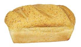 Świeżej kukurydzy kukurydzany chleb odizolowywający na bielu Zdjęcia Royalty Free