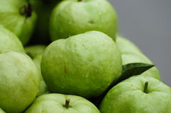 świeżej owoc guava Zdjęcie Royalty Free