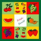 Świeżej owoc kolekcja, owoc set Obraz Stock