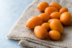 Świeżej owoc Kumquat, Cumquat na worku/ Fotografia Stock