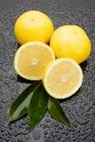 świeżej owoc winogrona powierzchnia mokra zdjęcia royalty free