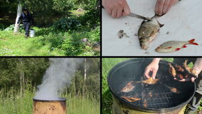 Świeżej ryba narządzanie i cleaning Teledyska kolaż zbiory