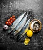 Świeżej ryby makrela na sieci rybackiej z pomidorami, czosnkiem, cytryną i pikantność, fotografia stock