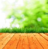 Świeżej wiosny zielona trawa z zielonym bokeh, światło słoneczne i drewno Obrazy Stock