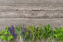 Świeżej ziele basilu macierzanki rozmarynowej mądrej mennicy cząberu koperkowa lawenda Fotografia Stock