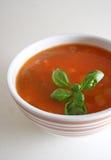 świeżej zupy Obrazy Stock