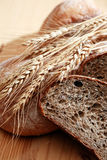 Świeżość chleba set zdjęcie stock