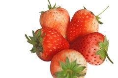 Świeżość czerwoni strawberrys odizolowywający na białym tle obrazy royalty free