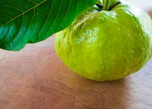 Świeżość liść na drewnianej desce i guava obraz royalty free