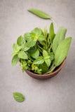 Świeżość ziele wciąż życie z miętówką, rozmaryn, macierzanka, mędrzec fotografia stock