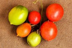 Świeżo ciie czerwonych żółtej zieleni pomidory kłama na burlap fotografia stock