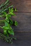 Świeżo cliped ziele na drewnianym tle fotografia stock