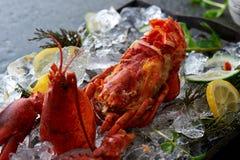 Świeżo gotujący homar i krab Obrazy Royalty Free