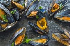 Świeżo gotujący mussels Obrazy Stock