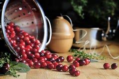 Świeżo Myjący Cranberries w Nierdzewnym Colander Zdjęcie Royalty Free