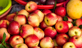 Świeżo myjący jabłka! fotografia stock