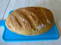 Świeżo piec chleb na błękitnej macie Fragrant i zdrowi ciasta domowej roboty ciasta Mąka, woda, drożdże, pikantność, słonecznikow fotografia royalty free
