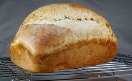 Świeżo Piec Chlebowa deaktywacja na Drucianym stojaku Zdjęcie Royalty Free