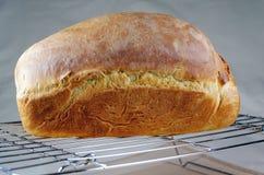 Świeżo Piec Chlebowa deaktywacja na Drucianym stojaku Obraz Royalty Free