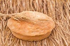 Świeżo piec chlebowi i pszeniczni spikelets na haystack Obraz Royalty Free