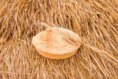 Świeżo piec chlebowi i pszeniczni spikelets na haystack Zdjęcia Royalty Free