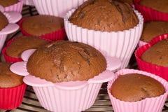 Świeżo piec czekoladowi muffins chłodzi na metal tacy obraz royalty free