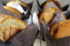 Świeżo Piec Muffins Chłodzić Zdjęcie Stock