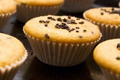 Świeżo piec muffins w filiżankach Zdjęcie Stock