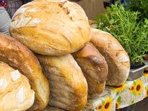 Świeżo piec tradycyjni bochenki żyto chleb na kramu przy bazarem Fotografia Royalty Free