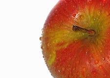 świeżo podnoszący jabłczani British Obraz Royalty Free