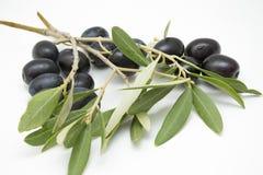 Świeżo ukradzione czarne oliwki Zdjęcie Royalty Free