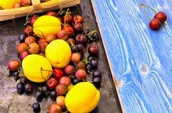 Świeżo ukradzione jagody morela, wiśnia i agrest, Fotografia Royalty Free