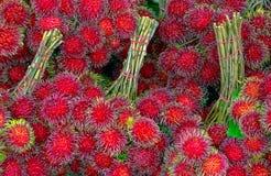 Świeżo zbierać bliźniarek owoc w Tajlandia obrazy royalty free