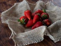 Świeżo zbierać truskawki na jutowym Obraz Stock