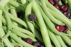 Świeżo Zbierać Zielone Smyczkowe fasole Rasberries i Czarna nakrętka obrazy royalty free
