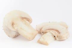 Świeżo zbierający pieczarkowy Agaricus bisporus Obrazy Stock