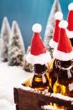 Świeży łyknięcie zimy piwo Obrazy Royalty Free