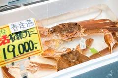 Świeży Śnieżny krab lub Zuwai rynek japoński Zdjęcia Stock