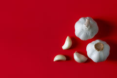 świeży żarówka czosnek przewodzi trzy Obraz Royalty Free
