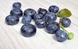Świeży żniwo dzika jagody czarna jagoda makro- Zdjęcie Stock