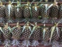 Świeży ananas dla sprzedaży obraz royalty free