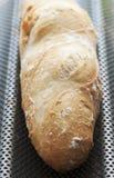świeży baguette francuz Obraz Stock