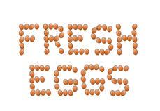 Świeży Brown jajek teksta Organicznie projekt ilustracji