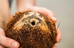 Świeży brown koks Zdjęcie Stock