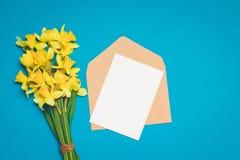 Świeży bukiet narcyzów kwiaty i koperta z listem na błękitnym tle minimalista zdjęcia royalty free