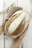 Świeży chleb i banatka Zdjęcia Stock