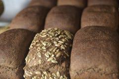 Świeży chleb na półce Zdjęcia Stock